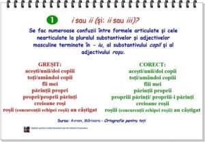 16-copiii-fiii-mei-parintii-proprii-exprimare-gramatica-romania-cum-vorbim-frumos-cum-scriem-corect-limba-romana